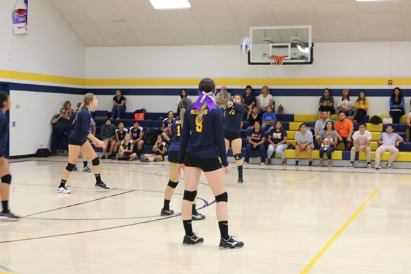 LHS Volleyball